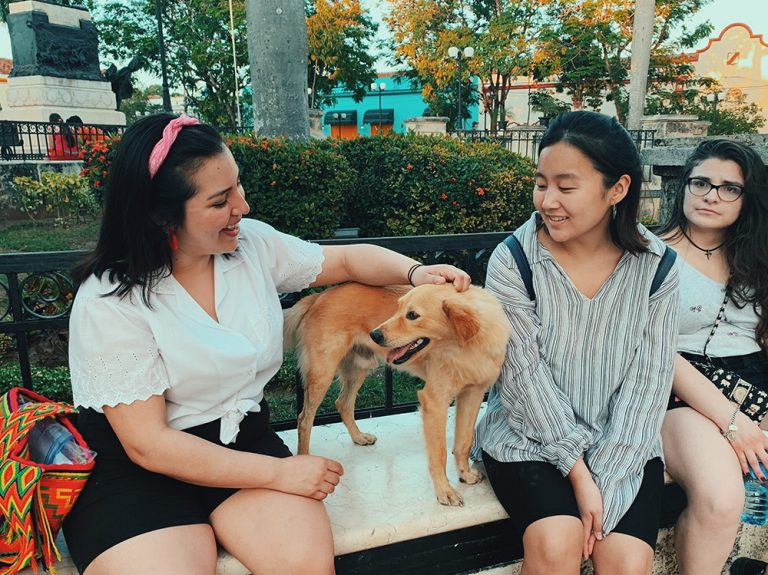 Photograph of three women, one petting a dog