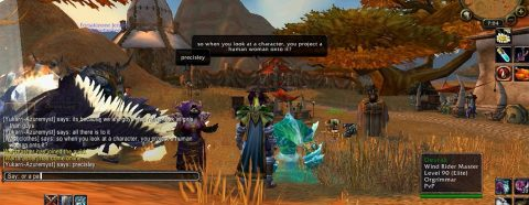 Video game still from the World of Warcraft