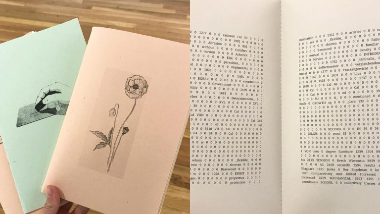 Two images of zines, one showing the cover, and the other showing the text inside