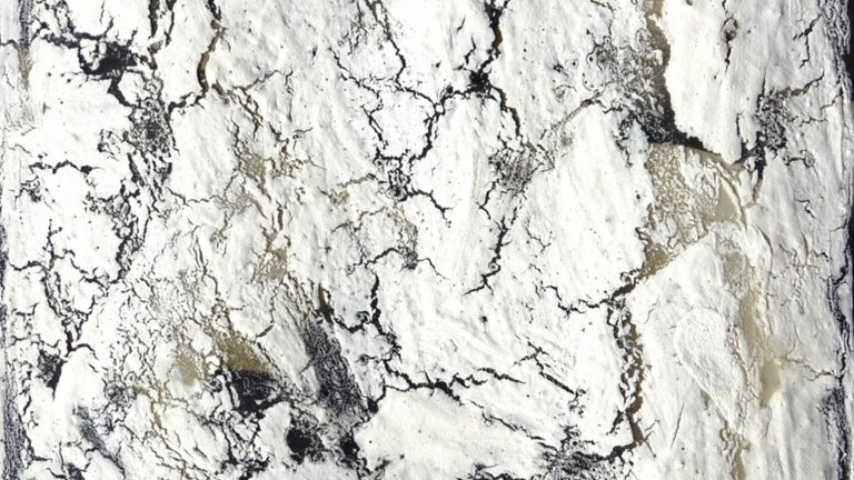 Abstract painting of an image almost entirely covered in chalky bone meal